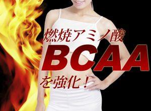 ピュアスリミーに含まれる燃焼系アミノ酸BCAAのイメージ