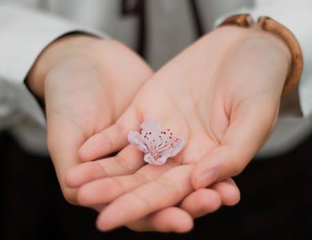 手のひらに花が乗っている写真