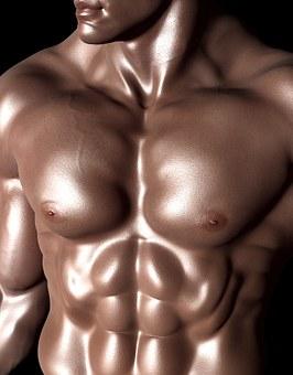 鋼のような筋肉