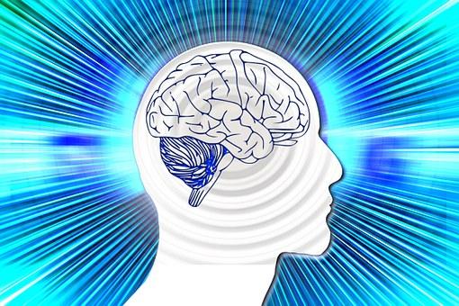 金剛筋シャツから脳が刺激を受ける絵