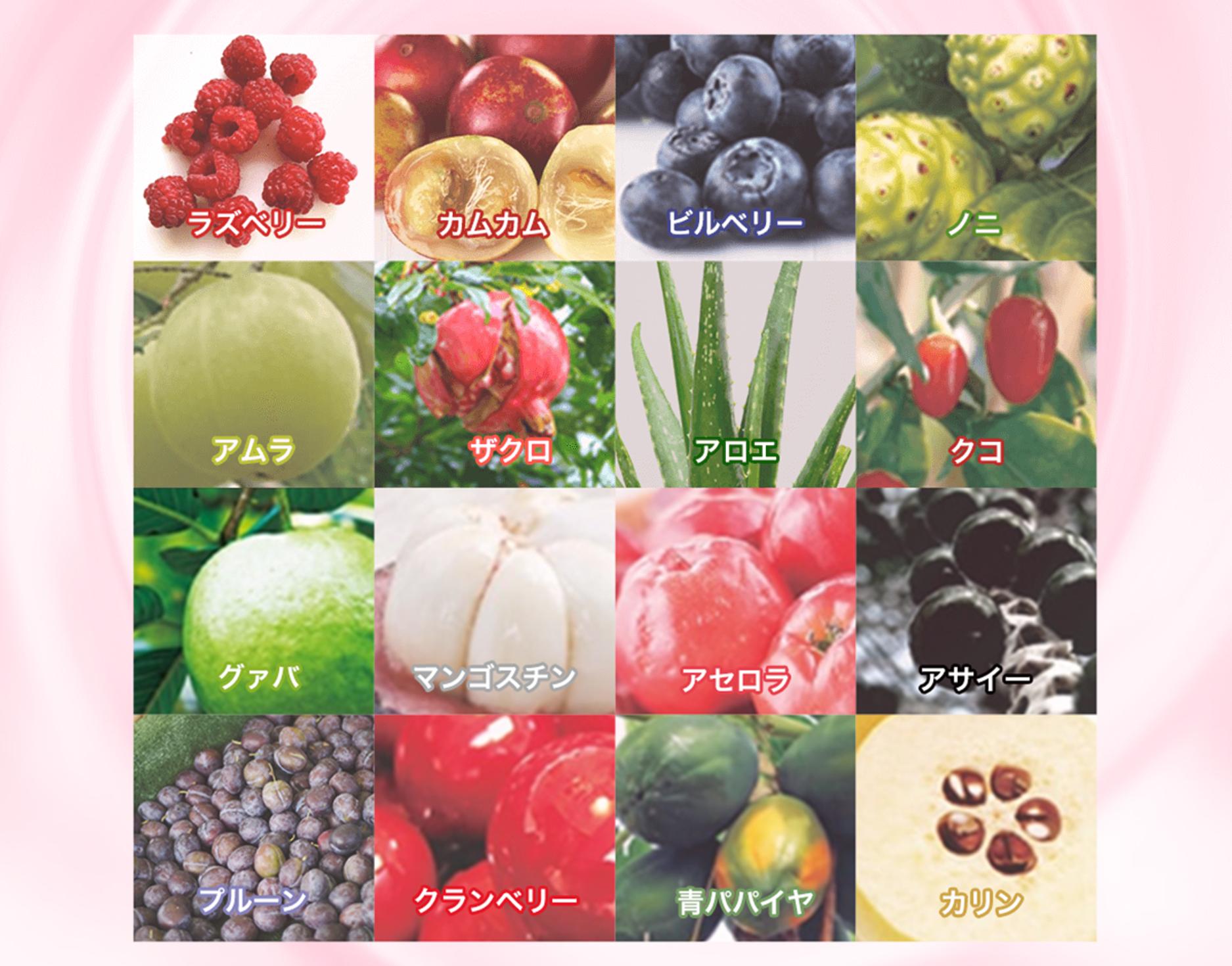 まるっと超熟生酵素_16種類のスーパーフルーツ