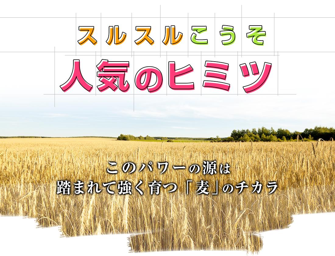 穀物発酵エキスの画像