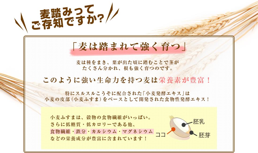 穀物発酵エキスの詳細説明