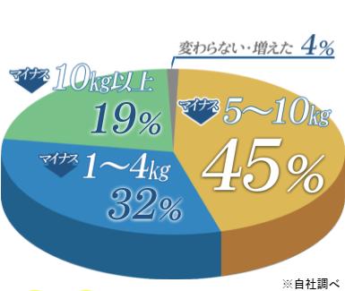 クリスチャントルソーによる体重減少の円グラフ
