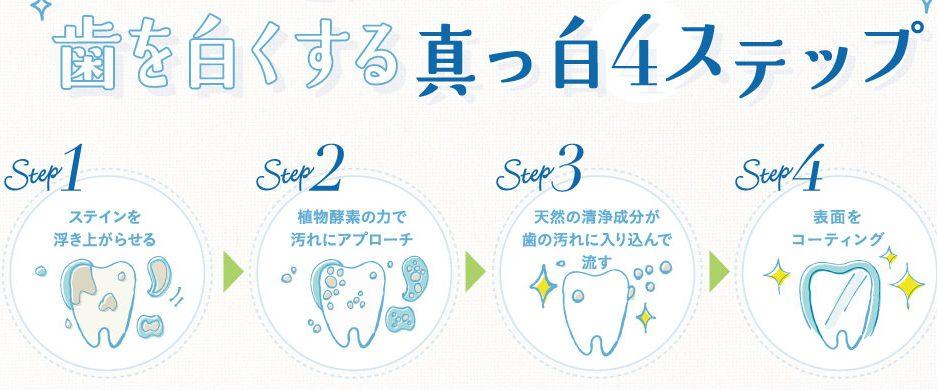真っ白4STEP