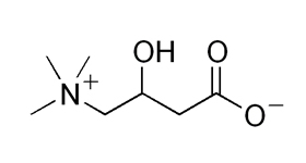 L-カルニチンフマル酸塩