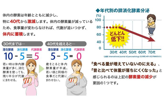 酵素量の減少グラフ