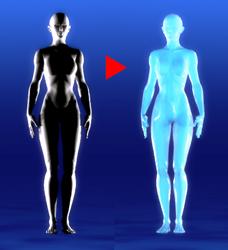 ライジングメタボ 人体 吸収