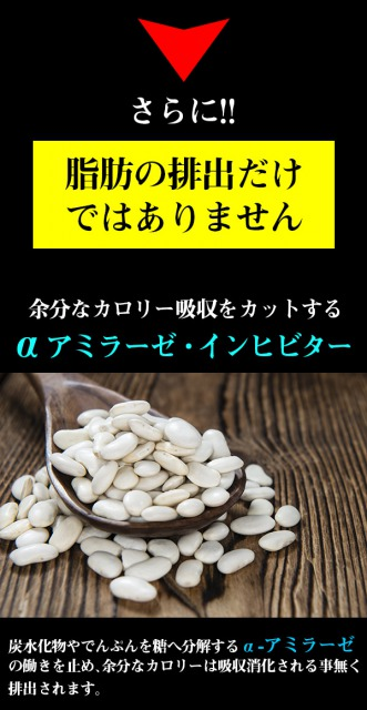 白インゲン豆の写真