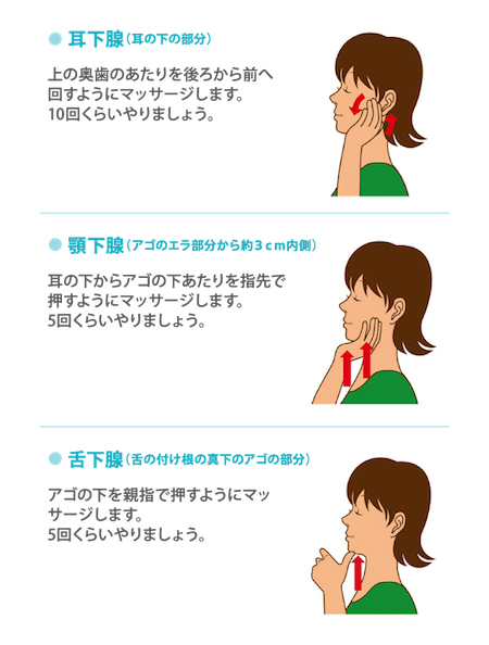 唾液腺マッサージ(要引用)