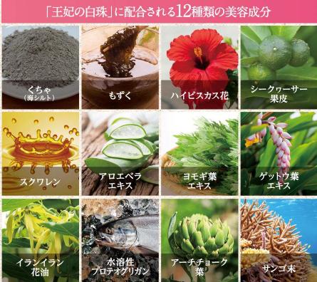 12種類の美容成分たち