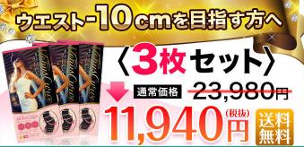 ヴィーナスカーブ3枚セットの写真と価格