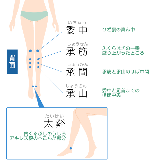 脚のツボ(背面)