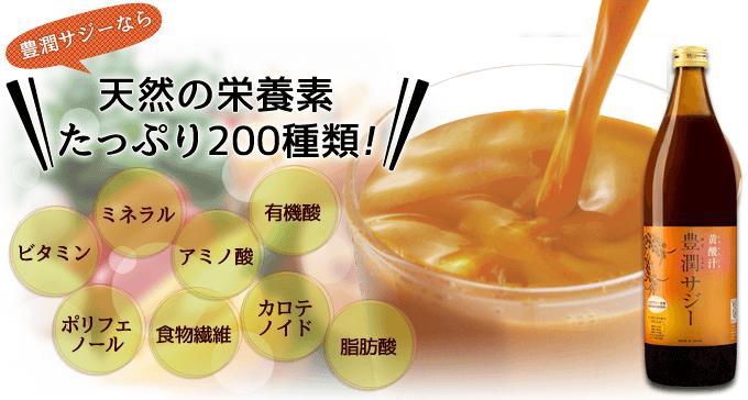 豊潤サジー 栄養素