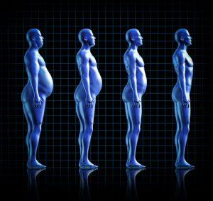 アンファットカプセルによる体の変化例