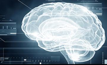 脳が飢餓状態と錯覚