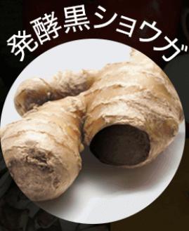 黒汁(KUROJIRU) 発酵黒ショウガ