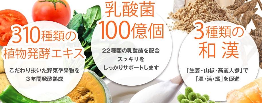 310種類の植物発酵エキス