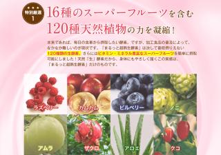まるっと超熟生酵素のスーパーフルーツ