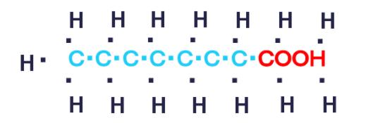 中鎖脂肪酸の炭素数